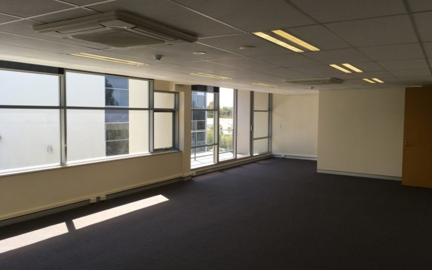 Light Filled As-New Office Space
