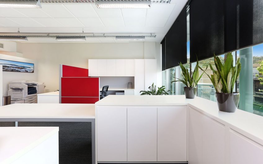 Stunning; light filled, north facing office space.